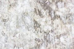 Szary betonowej ściany zakończenie dobry dla wzorów i tło Obraz Stock