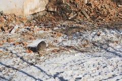 Szary kota odprowadzenie wśród czerepów cegły na miejscu Obraz Royalty Free