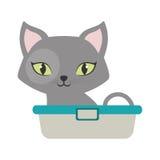 szary mały kot siedzi zielonych oczu wannę Obraz Stock