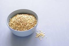 Szary puchar suchy oatmeal fotografia royalty free