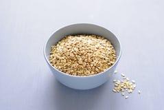 Szary puchar suchy oatmeal zdjęcia stock