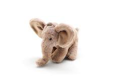 Szary słoń Zdjęcie Royalty Free