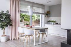 Szarzy rzymscy cienie i różowa zasłona na dużych, szklanych okno w a, zdjęcia stock
