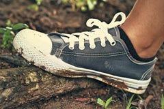 Szarzy Sneakers - akcesoria i noszony (Sneakers) Obrazy Stock