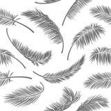 Szarzy tropikalni liście na białym odosobnionym tle Bezszwowy wektoru wzór dla druku projekta, tapeta, miejsc tła, pocztówka obrazy royalty free