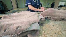 Szata pracownik fabryczny jest muskający futerka nieżywi zwierzęta i prostujący zbiory