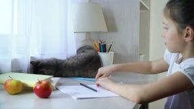 Szczęśliwa mała dziewczynka bawić się z jej zwierzę domowe kotem i patrzeje kamerę zdjęcie wideo
