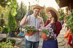 Szczęśliwe faceta i dziewczyny ogrodniczki w słomianych kapeluszy chwycie puszkują z petunią na ogrodowej ścieżce wewnątrz na sło zdjęcia royalty free