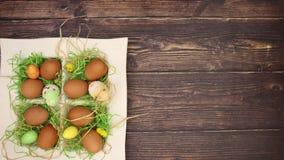 Szczęśliwy Easter - zatrzymuje ruch zbiory