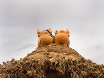 Szczęście byki na Peruwiańskim wsi gospodarstwa rolnego wejściu Obrazy Royalty Free