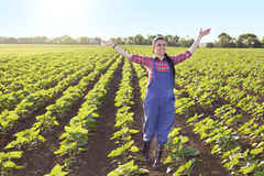 Szczęśliwa średniorolna dziewczyna w słonecznika polu Obraz Royalty Free