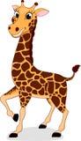 Szczęśliwa żyrafy pozycja Zdjęcia Royalty Free