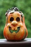 szczęśliwa bania Zdjęcie Royalty Free