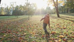 Szczęśliwa chłopiec bawić się z jesień liśćmi rzuca liście w zwolnionym tempie zbiory