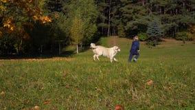 Szczęśliwa chłopiec europejski pojawienie ma zabawę bawić się w jesień parku z dużym pięknym psem - zwolnione tempo zdjęcie wideo