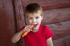 Szczęśliwa chłopiec trzymający marchewkę Obraz Royalty Free