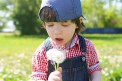 Szczęśliwa chłopiec z blowballs w lecie zdjęcie stock
