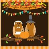 Szczęśliwa dziękczynienie dnia karta lub plakat z ślicznymi sowami w pielgrzymim kostiumowym obsiadaniu na gałąź royalty ilustracja