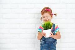 Szczęśliwa dziecko dziewczyna śmia się garnek z doniczkową rośliną blisko i trzyma Zdjęcie Stock