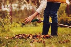 Szczęśliwa dziecko dziewczyna bawić się małej ogrodniczki w jesieni i podnosi opuszcza w kosz Zdjęcie Royalty Free