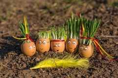 Szczęśliwa jajeczna rodzina Obraz Royalty Free