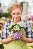 Szczęśliwa kobieta wącha kwiaty w szklarni obraz stock