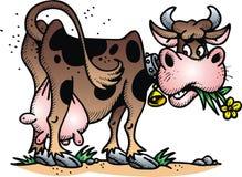 Szczęśliwa krowa ilustracji
