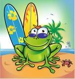 Szczęśliwa lato żaba Obrazy Royalty Free