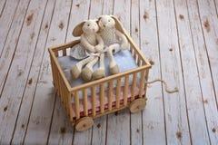 Szczęśliwa młoda królik para obrazy stock