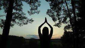 Szczęśliwa młodej kobiety sylwetka przeciw nieb dźwignięciom wręcza up w powietrzu zbiory