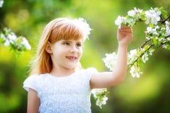 Szczęśliwa mała dziewczynka ma zabawę w kwitnącym wiosna ogródzie Obraz Stock