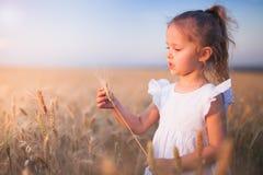 Szczęśliwa mała dziewczynka Plenerowa Przy Pszenicznym polem pod koniec lata zdjęcie stock