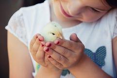 Szczęśliwa mała dziewczynka trzyma kurczaka w jego rękach Dziecko z Poul obrazy royalty free