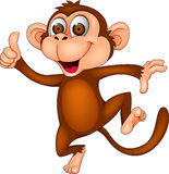 Szczęśliwa małpa Zdjęcia Stock