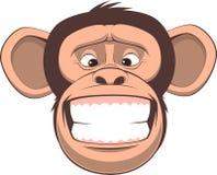 szczęśliwa małpka Obrazy Royalty Free
