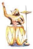 szczęśliwa małpka ilustracji