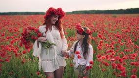Szczęśliwa matka i córka iść dalej kwitnąć maczka pole przy zmierzchem, zwolnione tempo zbiory wideo