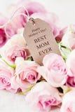 szczęśliwa matka jest dzień obraz stock