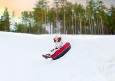 Szczęśliwa nastoletnia dziewczyna ślizga się w dół wzgórze na śnieżnej tubce obraz stock