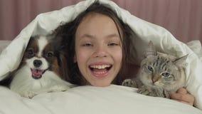 Szczęśliwa nastoletnia dziewczyna komunikuje z psim Papillon i Tajlandzkim kotem w łóżko zapasu materiału filmowego wideo zdjęcie wideo