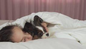 Szczęśliwa nastoletnia dziewczyna komunikuje z psim Papillon w łóżko zapasu materiału filmowego wideo zdjęcie wideo