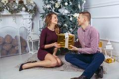 Szczęśliwa para świętuje nowego roku Zdjęcia Royalty Free