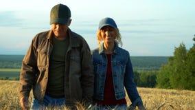 Szczęśliwa para, w średnim wieku mężczyzna, kobieta, i podczas gdy chodzący na pszenicznym polu przy zmierzchu lata wieczór zbiory