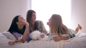 Szczęśliwa przyjaciel dziewczyny plotka i zabawę podczas sen przyjęcia lying on the beach na łóżku z poduszkami w domu zdjęcie wideo