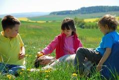 szczęśliwa rodzina łąka zdjęcia royalty free