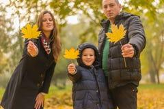 szczęśliwa rodzina park Fotografia Royalty Free