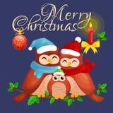 Szczęśliwa rodzina sowy mamy dziecko w ciepłym obsiadaniu na gałąź i tata kapeluszu i szalika i cieszy się wigilię boże narodzeni ilustracji