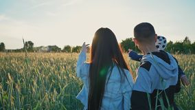Szczęśliwa rodzina trzy ludzie chodzi pszenicznych pola wśród zielonych spikelets w promieniach położenia słońce Szczęśliwy zbiory