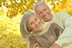 Szczęśliwa rodzina w jesień lesie Obraz Royalty Free
