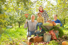 Szczęśliwa rodzina z żniwem w ogródzie Zdjęcie Royalty Free